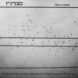 rroo_into_a_cloud