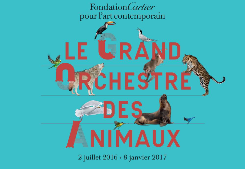 le-grand-orchestre-des-animaux