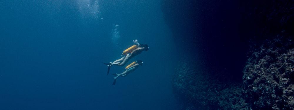 Dans les profondeurs, dans L'Odyssée